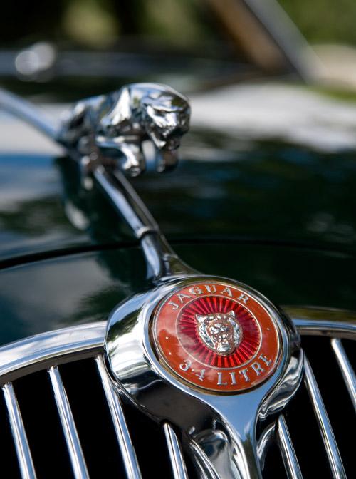 Jaguar-Kühlerfigur dunkel